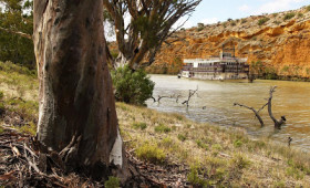 Captain Cook Cruises New Murray River Loxton Cruises
