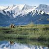Alaska cruise post-tours