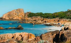What's New in Western Australia