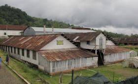 G Adventures West Africa. Day 11: São Tomé