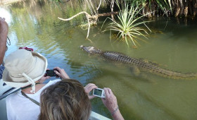 Shore excursions: Yellow Water Cruise, Cooinda in Kakadu National Park